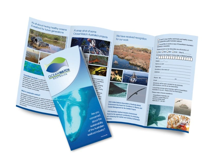 OceanWatch community donation brochure